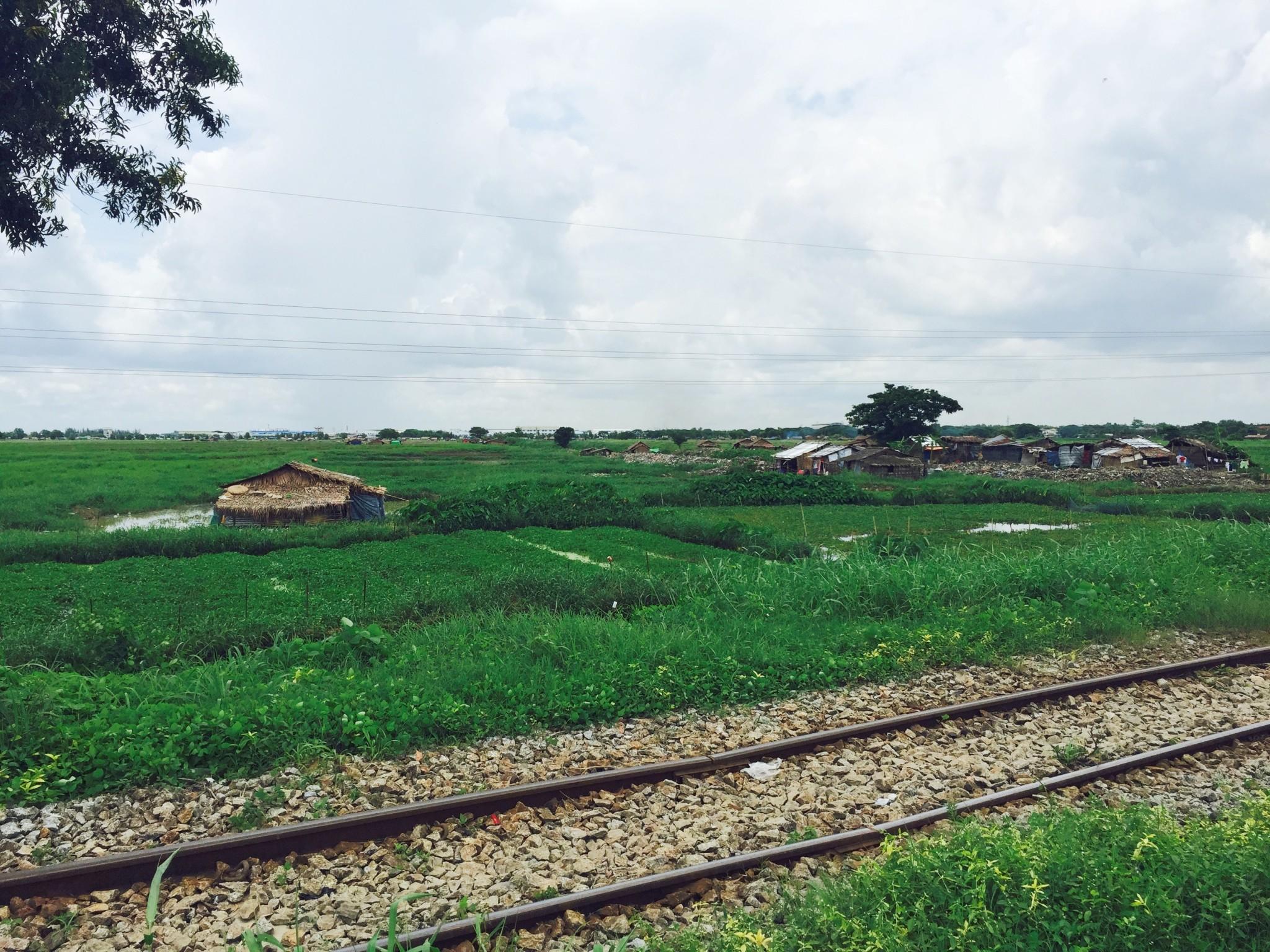 Fields in Myanmar